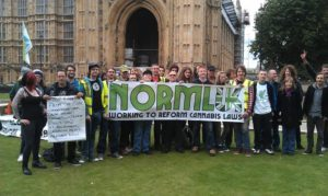 Bedrocan protest on College Green outside Parliament in 2014.