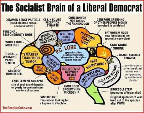 The socialist brain of a Liberal Democrat.