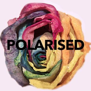 Polarised - A documentary on LGBTQ mental health - Polarised Mark 2 Rose