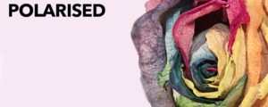 Polarised - A documentary on LGBTQ mental health - Polarised rose cover image